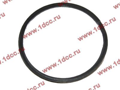 Кольцо уплотнительное выпускного коллектора H2 HOWO (ХОВО) VG260110162 фото 1 Нижний Тагил