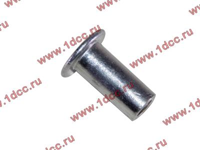 Заклепка алюминиевая 10х24 H2/H3 HOWO (ХОВО) 189000340068 AL фото 1 Нижний Тагил