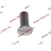 Заклепка алюминиевая 10х24 H2/H3 HOWO (ХОВО) 189000340068 AL фото 2 Нижний Тагил