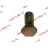Болт пустотелый М12х1,25 (штуцер топливный) H HOWO (ХОВО) 90003962607 фото 3 Нижний Тагил