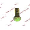 Болт пустотелый М10х1,0 (штуцер топливный) H HOWO (ХОВО) 81500070054 фото 3 Нижний Тагил